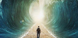 milagres-acontecem-quando-a-gente-vai-a-luta