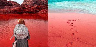 a-ilha-de-sangue-o-que-acontece-na-costa-do-ira-e-impressionante
