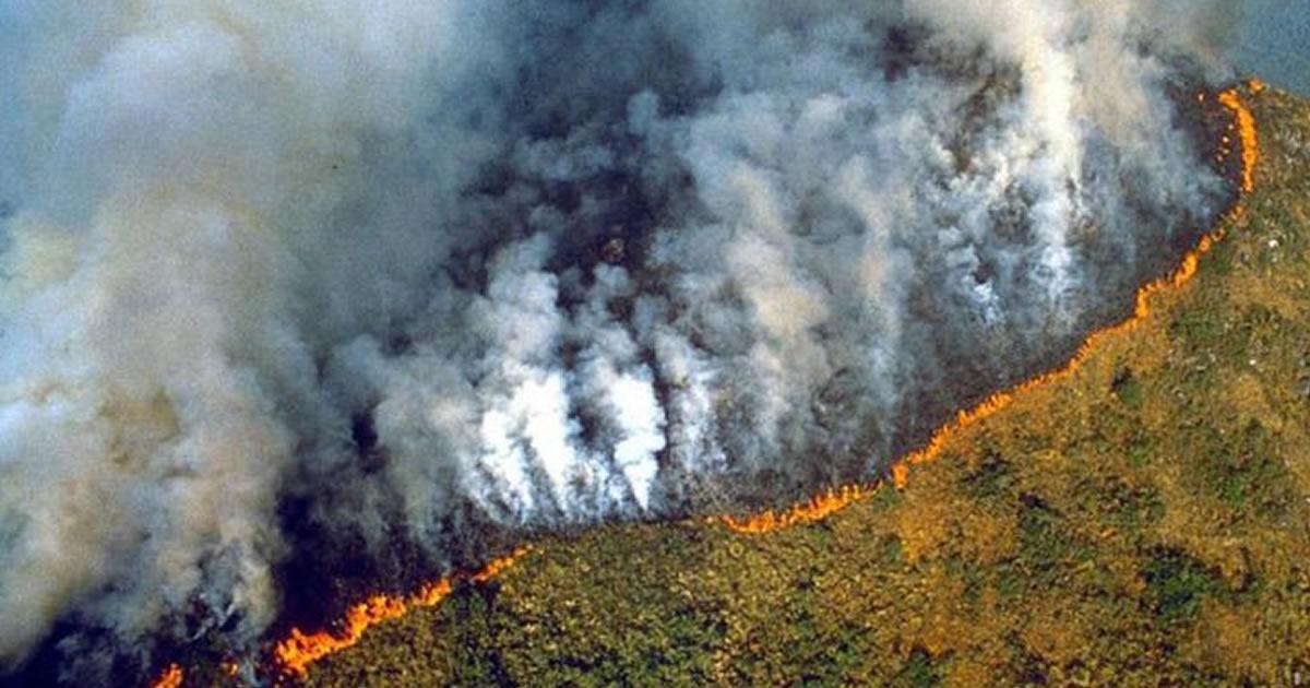 a-amazonia-teve-seu-pior-junho-em-13-anos-devido-a-incendios-florestais-a-ameaca-e-real