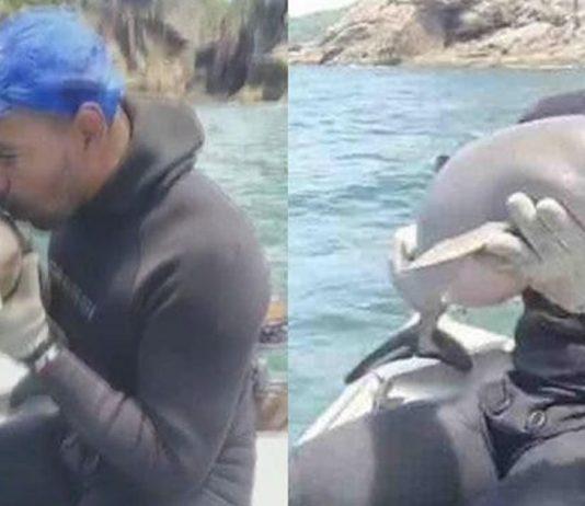 pescador-salva-filhote-de-golfinho-preso-na-rede-e-o-beija-antes-de-devolve-lo-ao-mar-ganhei-o-ano