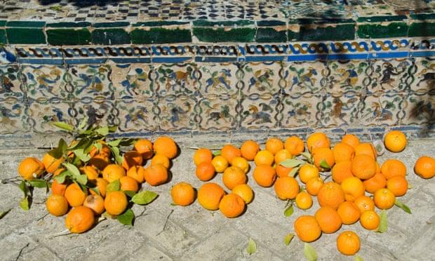 laranjas-deram-energia-na-espanha